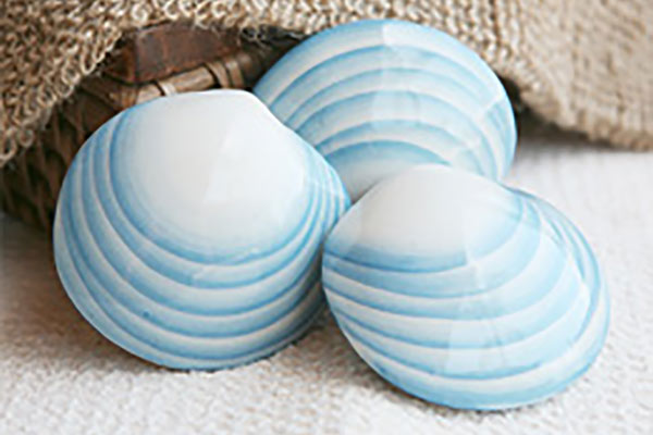 Glacial Shells